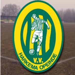 logo-harkema-opeinde