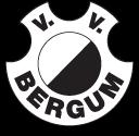 logo-vvbergum